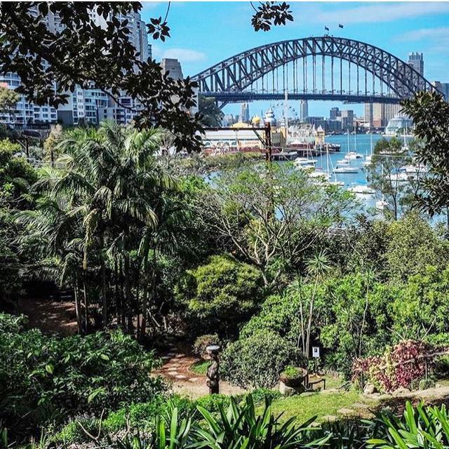 Sydney's Most Secret Summer Picnic Spots