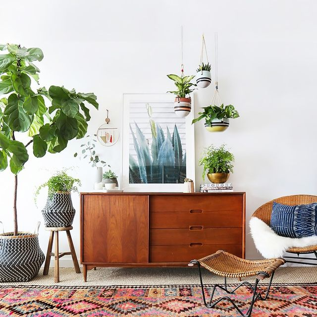 A Busy Girl's Guide to Greenery at Home
