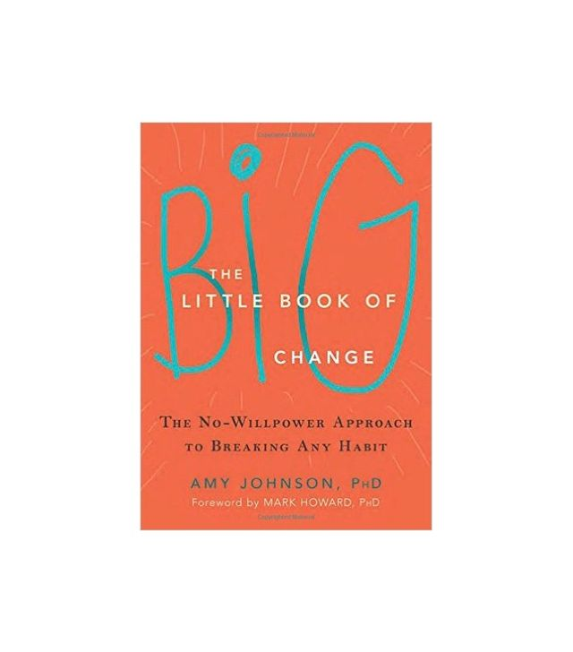 The Little Book of Big Change by Amy Johnson PhD