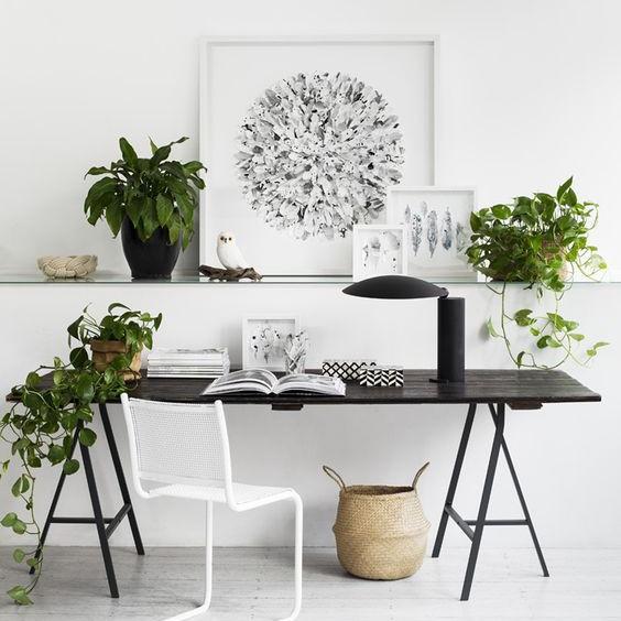 the best plants to de stress your desk mydomaine