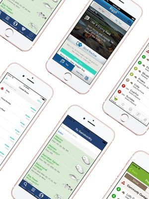 These Eco-Friendly Apps Will Help the Planet One Click at a Time