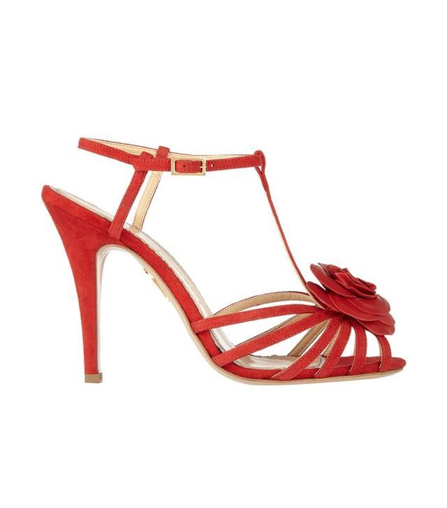 Charlotte Olympia Rosa Rose-Appliquéd Leather Sandals