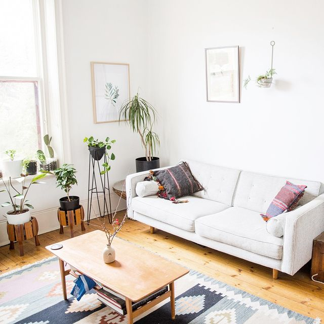 Inside this Plant Stylist's Charming 1901 Adelaide Cottage