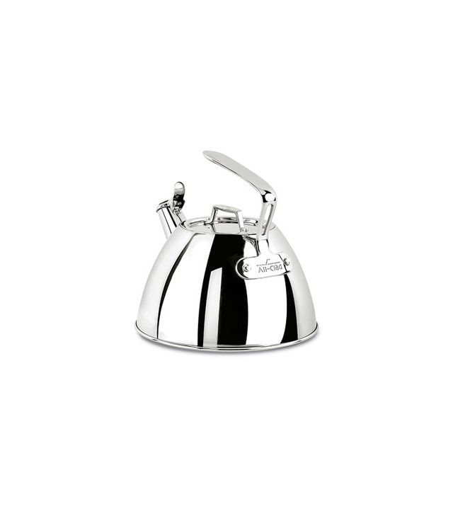 Williams-Sonoma All-Clad Stainless Steel Tea Kettle