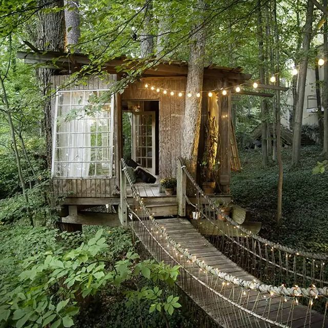 8 Breathtaking Tree Houses You Can Actually Rent on Airbnb