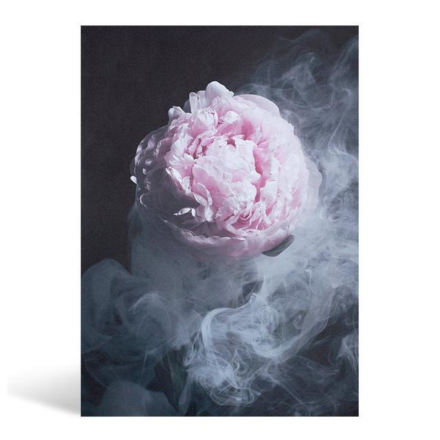 Art Club Concept x Kerrie-Ann Jones Enchanted