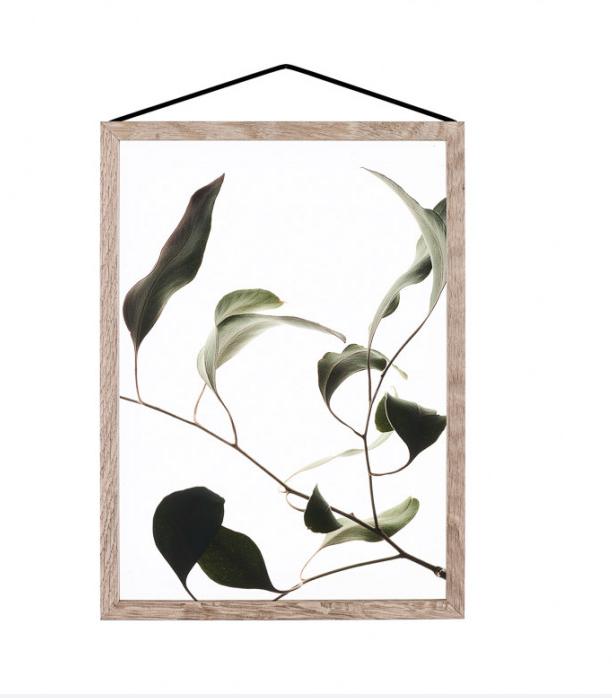 Moebe Floating Leaves Print
