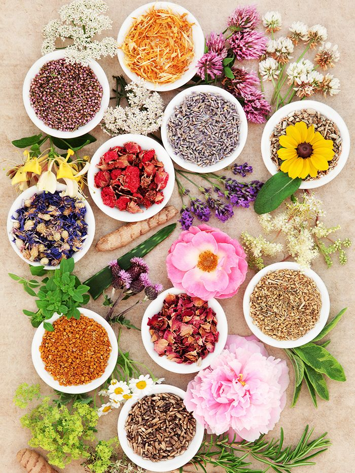 8 Healing Herbs You Need to Know About   TheThirty