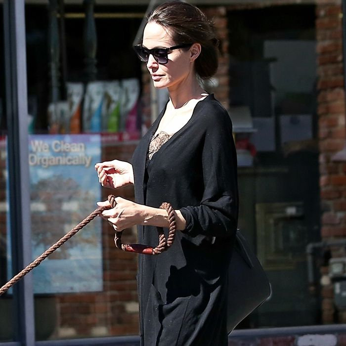 c61f306ff Angelina Jolie Wore the Everlane Editor Heels