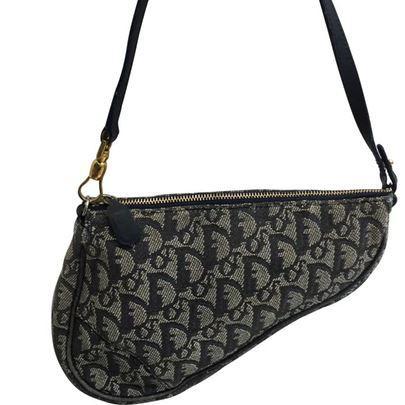 Dior Saddle cloth handbag