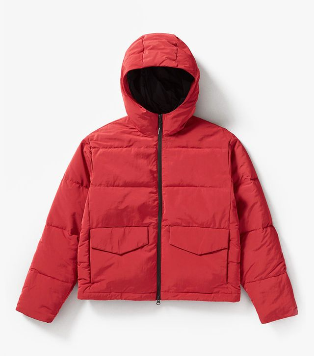 Women's Short Puffer Jacket Coat by Everlane in Ruby, Size XXS