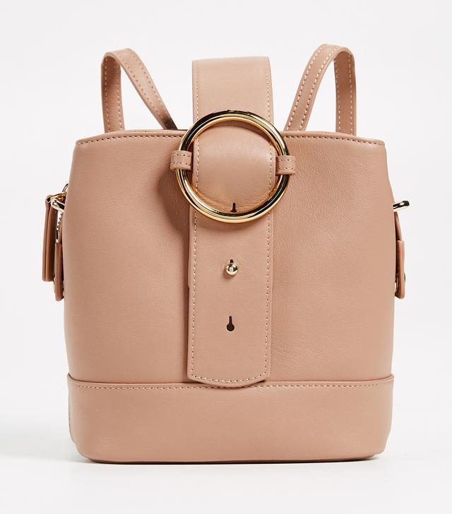 work backpack: Parisa Wang