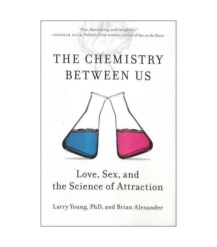 What does it mean when two people have chemistry