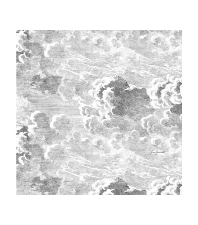 Cole & Son Nuvole Storm Wallpaper