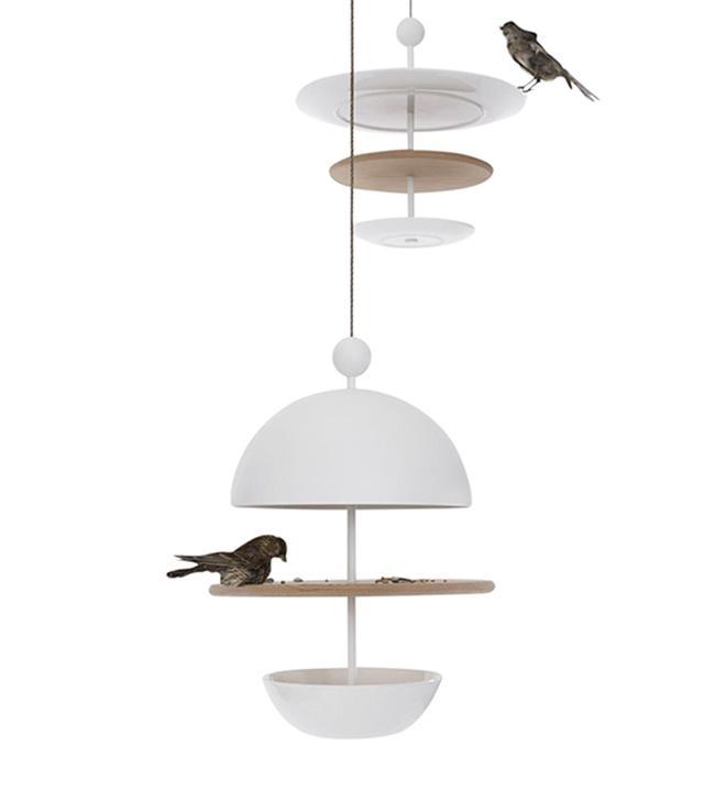 Roije Dish of Desire Bird Feeder