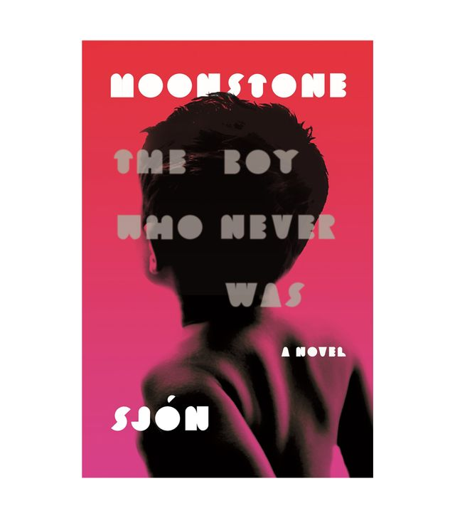 Sjón Moonstone: The Boy Who Never Was