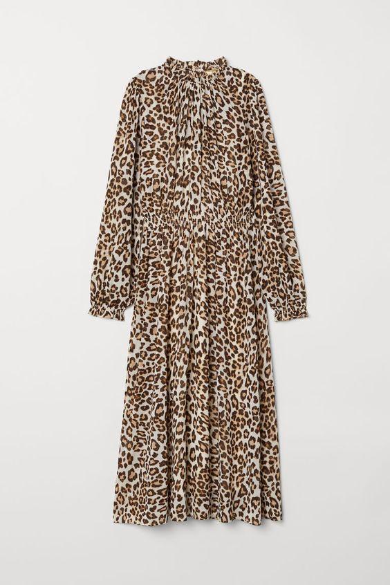 H&M Embroidered Chiffon Dress