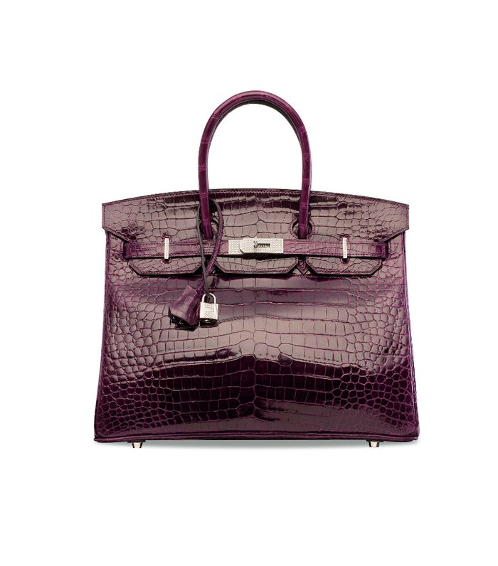 The Most Expensive Birkin Bags On The Internet Who What Wear