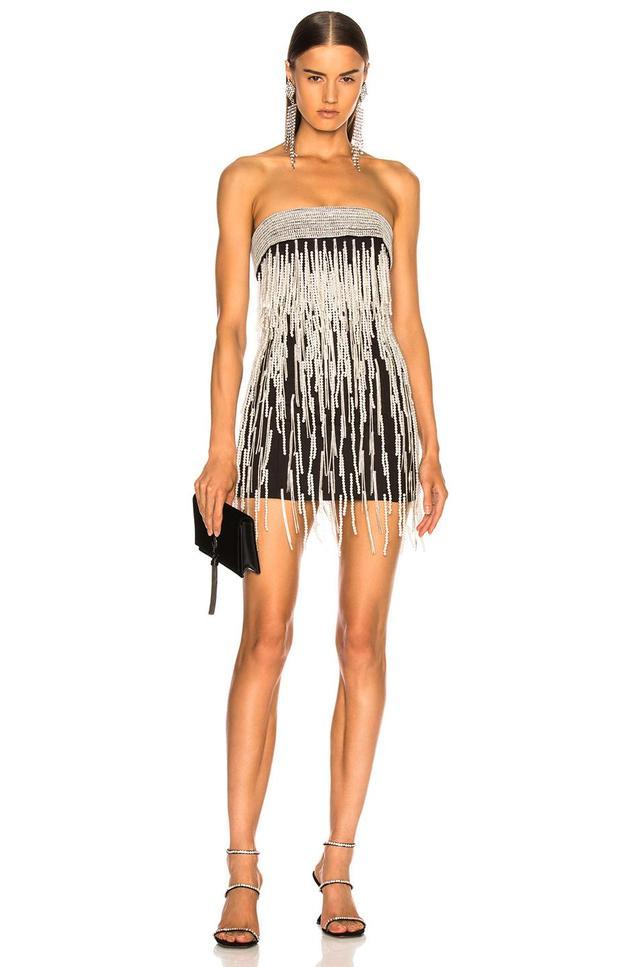 Ludmilla Fringe Beaded Mini Dress