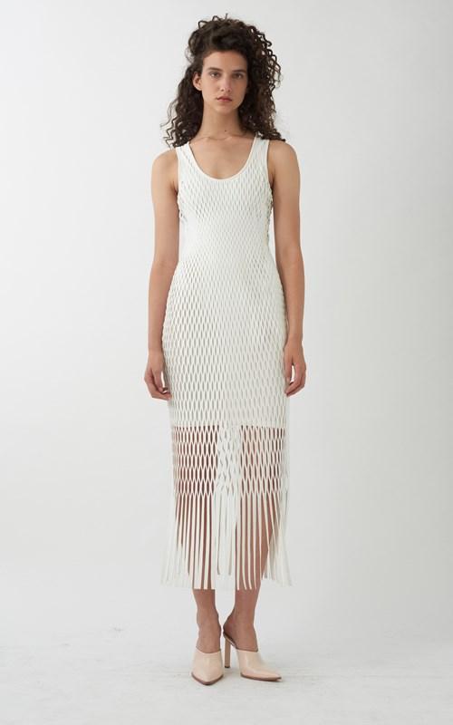 Dion Lee X-Ray Tank Dress