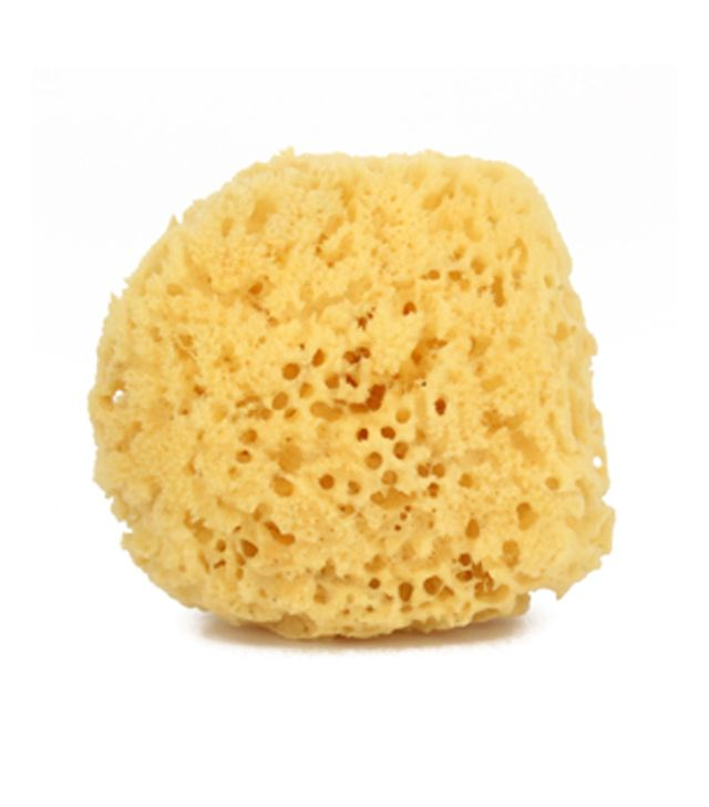 Murchison-Hume Natural Sea Sponge