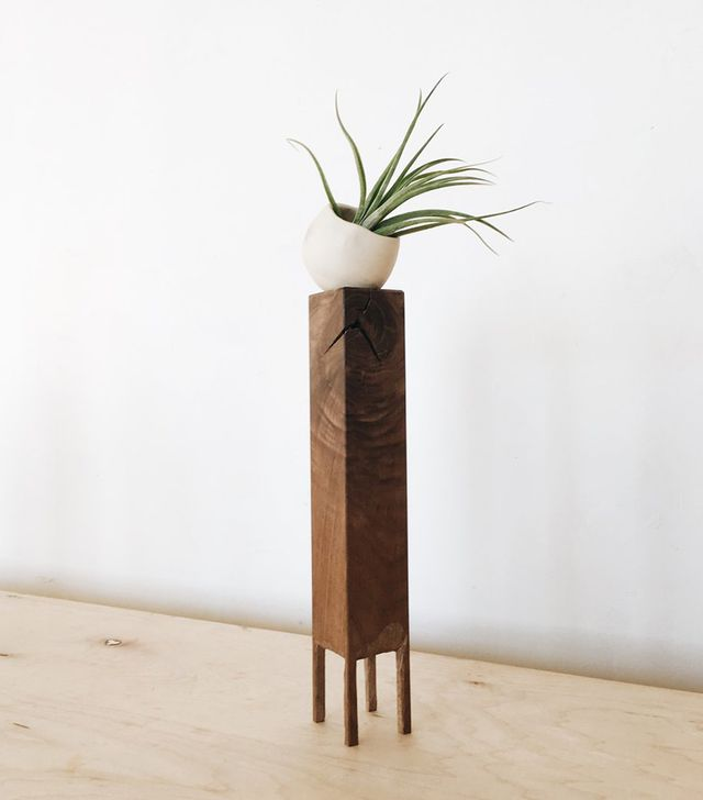 Two Tree Studios Air Plant Stand