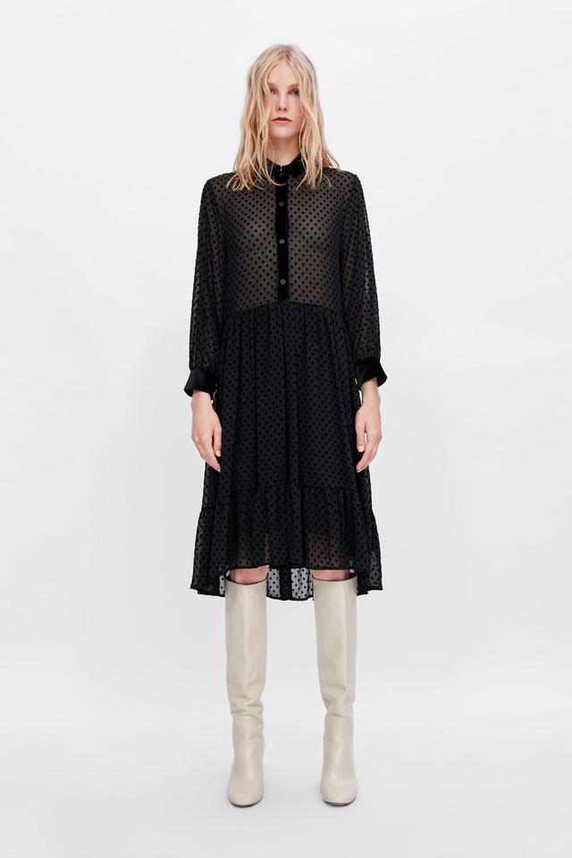 Zara Swiss Dot Dress