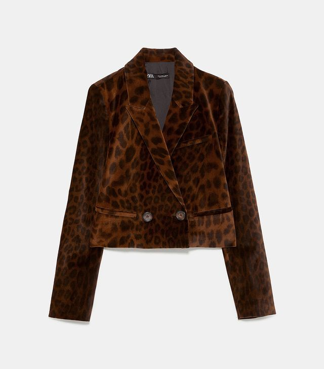 Zara Animal Print Velvet Blazer
