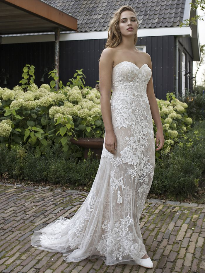b54aac5af5d The Big Problem With Plus-Size Wedding Dresses