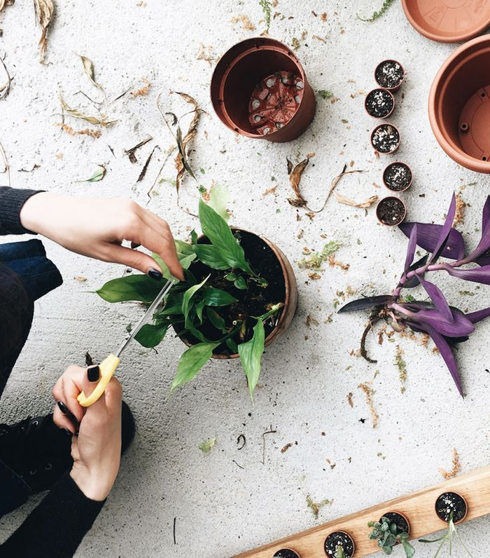 The Best Sustainability Tips We Learned from Our Secret Facebook Group