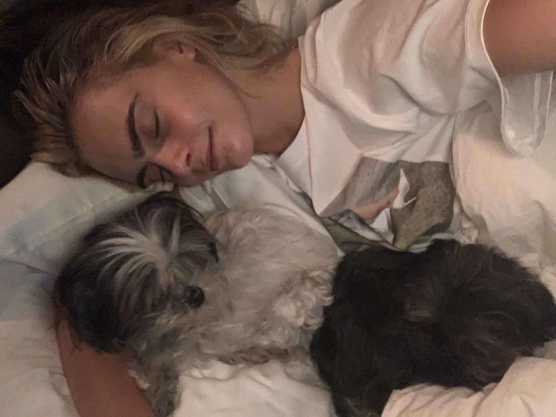 42 Photographs of Cute Pets (and Their Celeb Mother and father) That Are Making Us Smile 8
