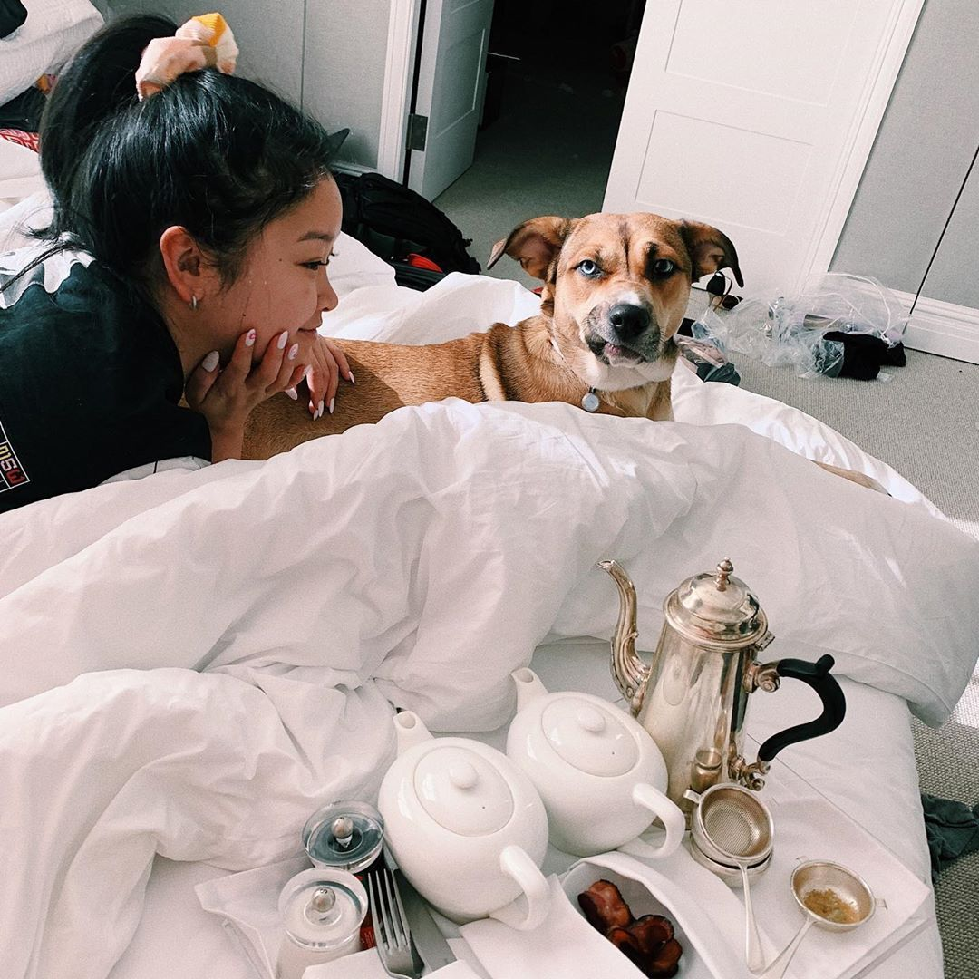 42 Photographs of Cute Pets (and Their Celeb Mother and father) That Are Making Us Smile 13