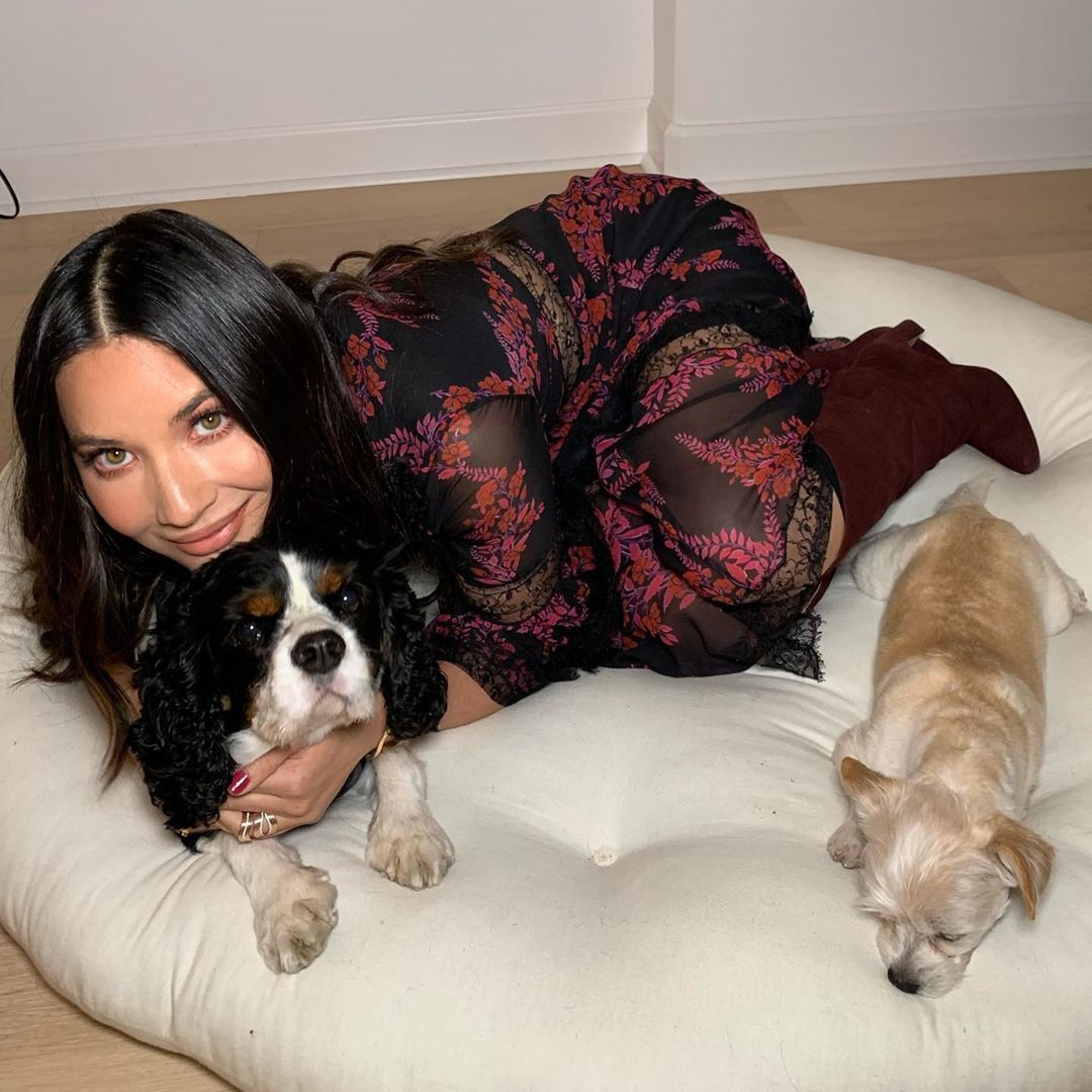 42 Photographs of Cute Pets (and Their Celeb Mother and father) That Are Making Us Smile 14