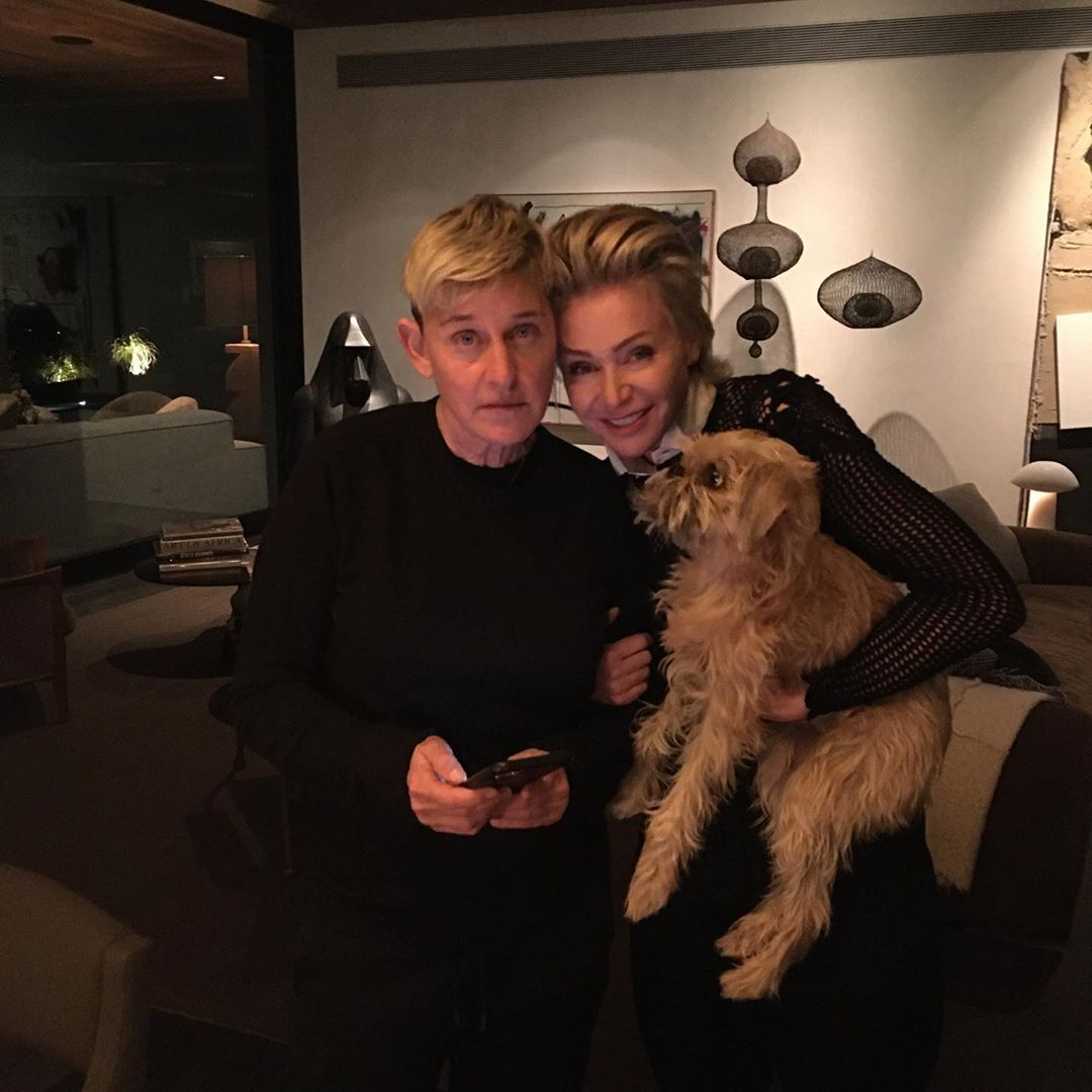 42 Photographs of Cute Pets (and Their Celeb Mother and father) That Are Making Us Smile 16