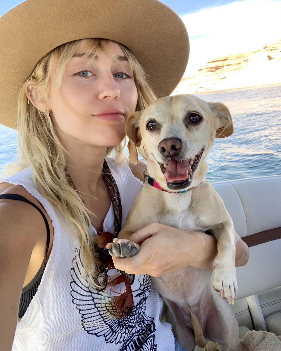 42 Photographs of Cute Pets (and Their Celeb Mother and father) That Are Making Us Smile 23