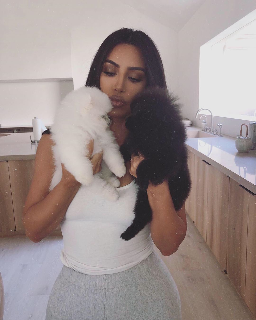42 Photographs of Cute Pets (and Their Celeb Mother and father) That Are Making Us Smile 27