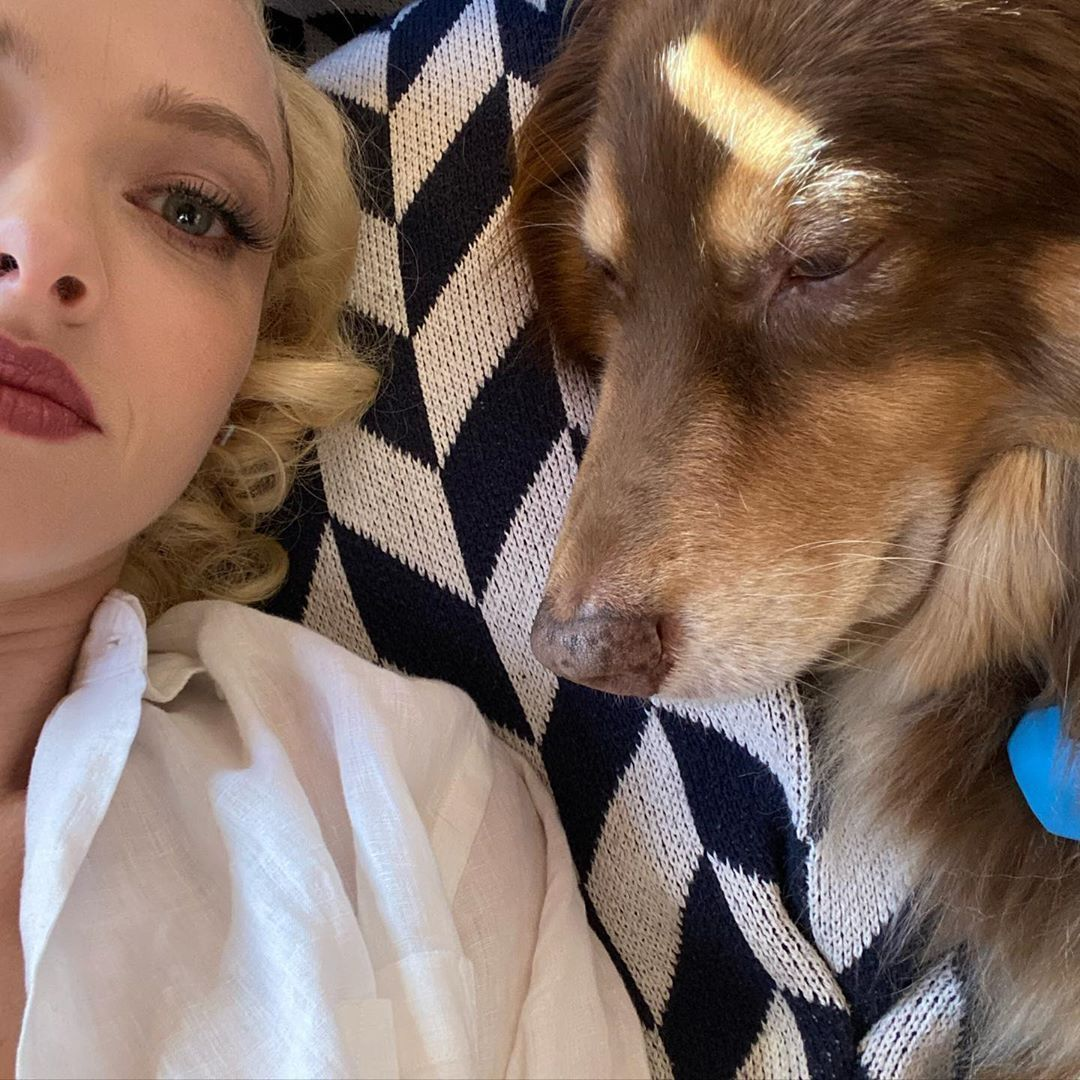 42 Photographs of Cute Pets (and Their Celeb Mother and father) That Are Making Us Smile 34