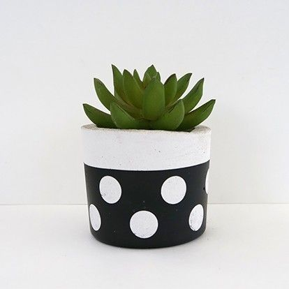 Super Stylish Planters Under $30
