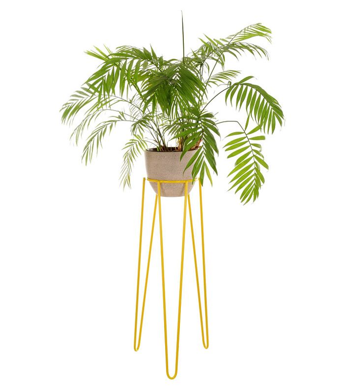 The 18 Best Plant Stands On The Market Mydomaine