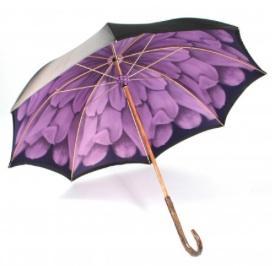 Illesteva  Umbrella 2