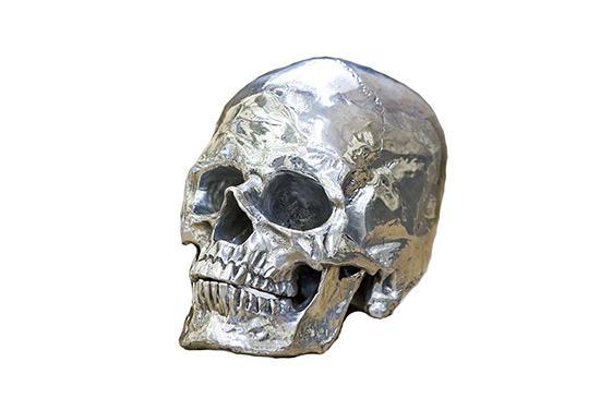 Tonic Home Metal Skull
