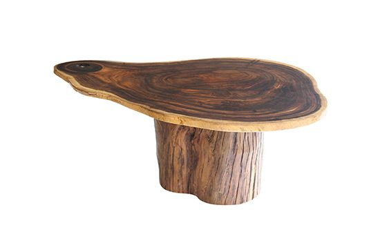 Dering Hall Cross Section Coffee Table