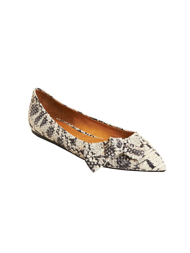 Isabel Marant Pointed-Toe Skimmers