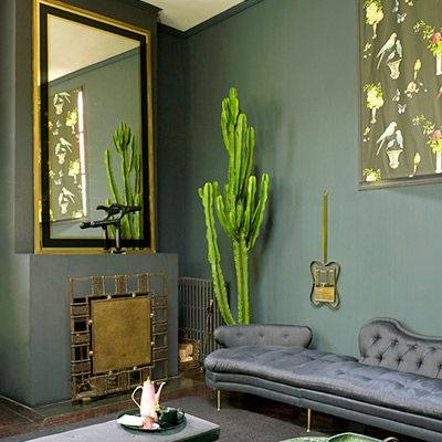Trend Alert: Cool Indoor Cacti