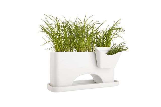CB2 + SAIC Sprout Planter