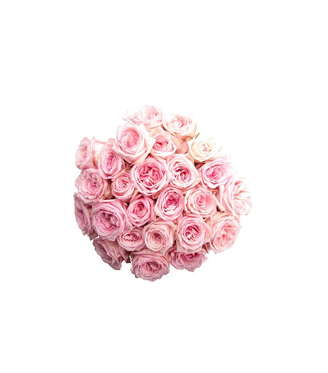 Flower Muse Light Pink Garden Roses