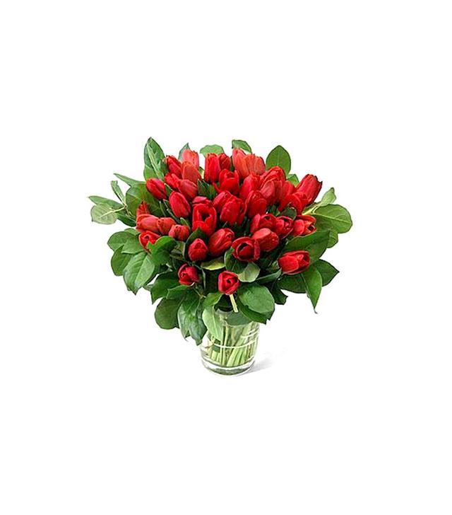 Flower Bud 40 Tulips