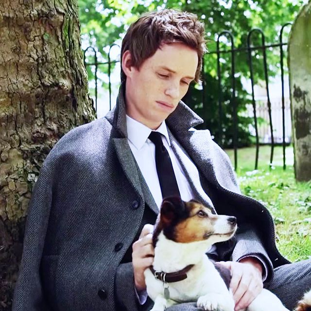 Eddie Redmayne Biking With a Puppy: Everything You Need to Watch Right Now