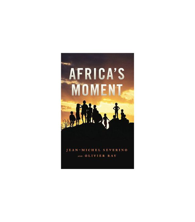 Polity Africa's Moment by Jean-Michel Severino and Olivier Ray