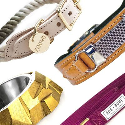 The Poshest Accessories for Your Pampered Pet